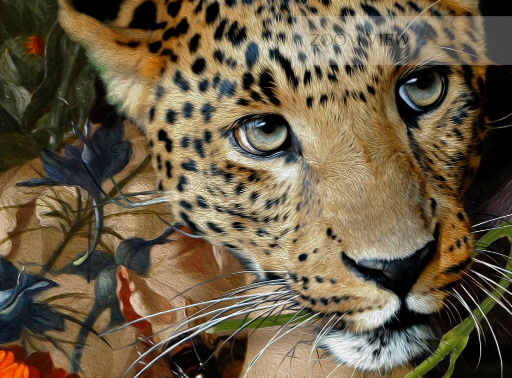 Leopard woman surreal art, erotic oil painting style on canvas